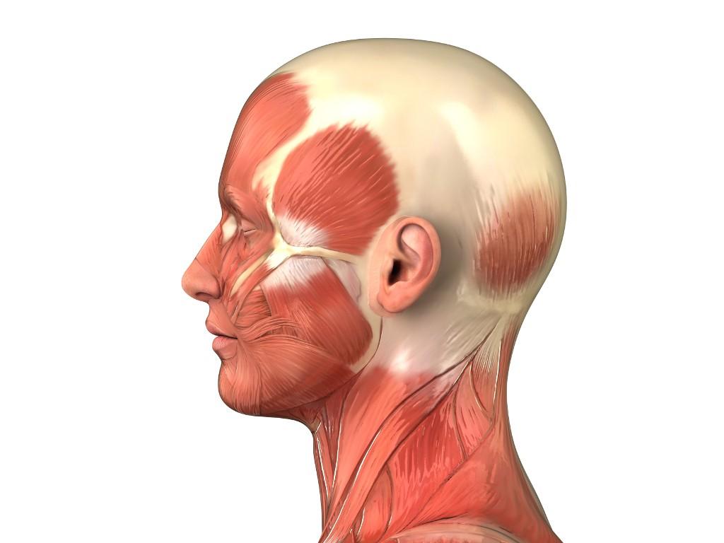 Dr. med. Perianez behandelt Haarausfall - AC Therapie   Dr. Perianez